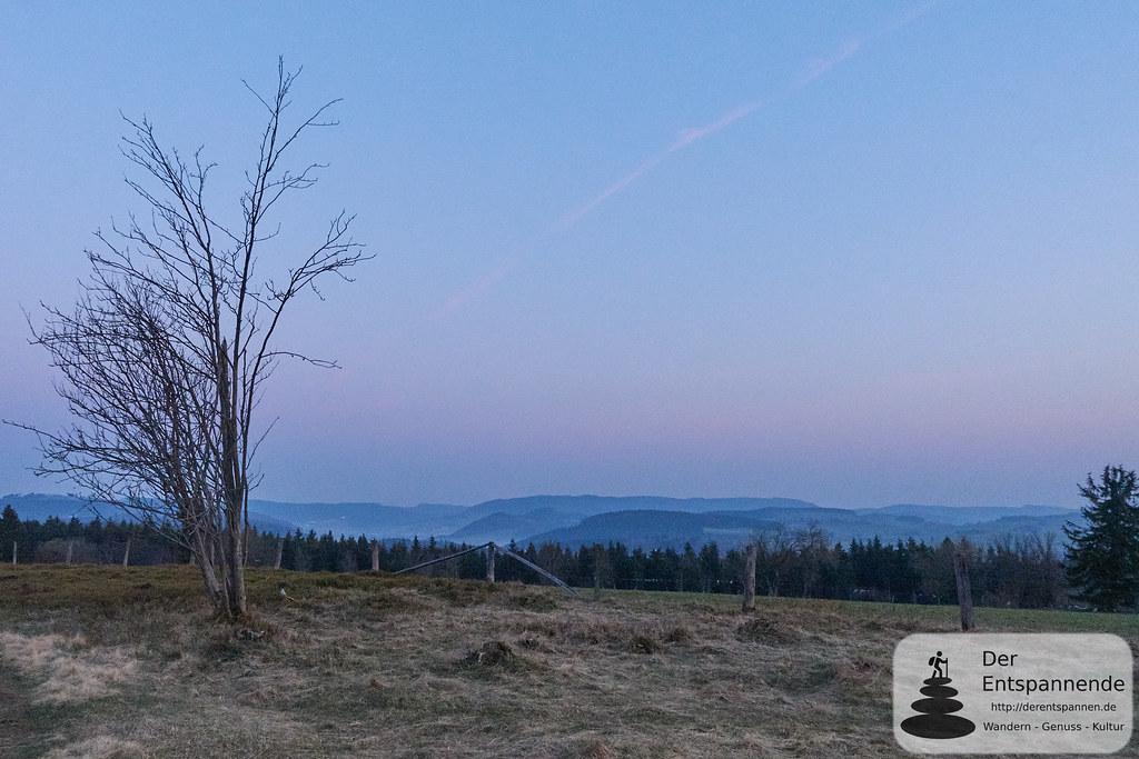 Sonnenaufgang auf dem heidebedeckten Gipfel des Kahlen Pön