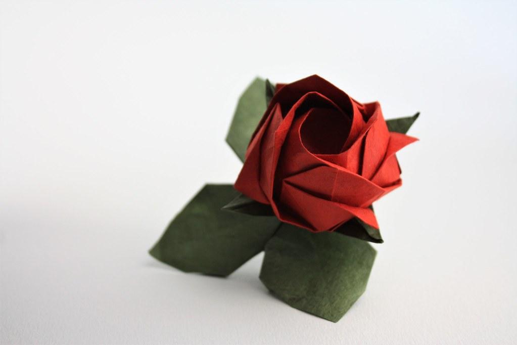 Origami Kawasaki Rose Bud – Origami Tutorials | 682x1023