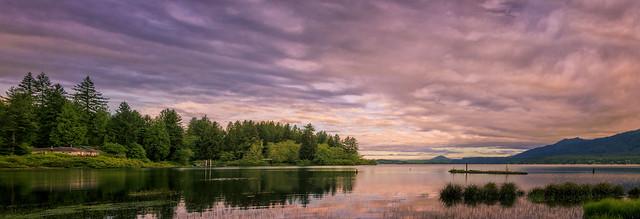 morning - Lake Quinault, Washington - 6-10-13 01