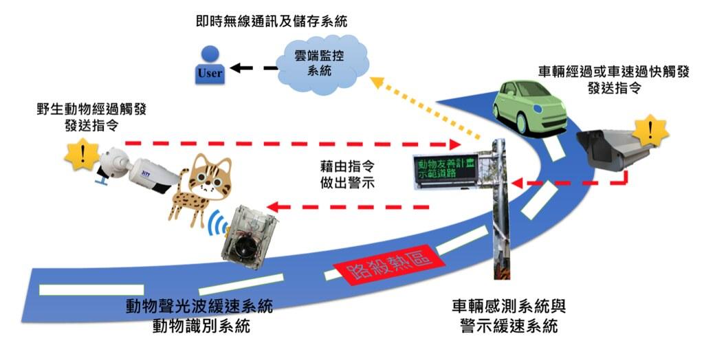 路殺社與公路總局、中興大學等團隊合作研發全臺第一套省道石虎警示系統:當測速系統偵測到車速超過60km/hr時,螢幕會顯示警示字樣,提醒用路人注意前方為石虎出沒熱區;另外,AI動物偵測系統當偵測到目標動物時,會向目標動物發出警示燈光或聲響,提醒動物不要靠近。然而,林德恩也表示,目前還在進行警示系統的調整,希望可以避免動物習慣提醒內容,而失去警示效果。圖片提供:臺灣特有生物研究保育中心。