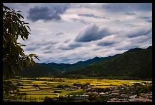 Korean path | by Lionel Davoust