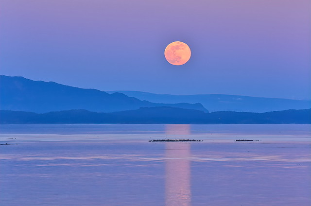 Super Worm Moon . . .