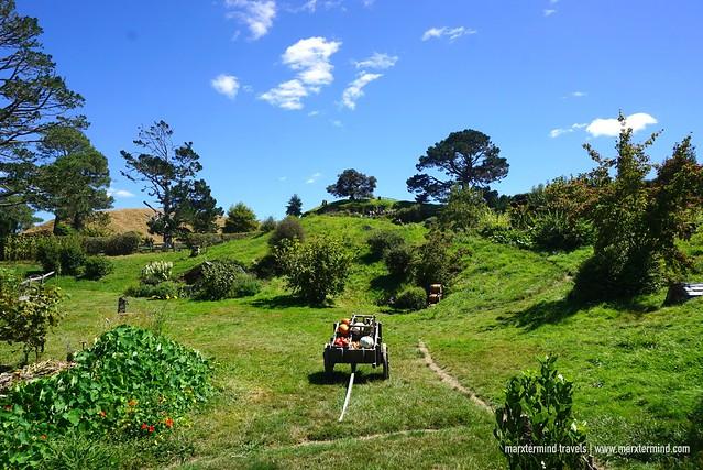 Farmland at the Hobbiton