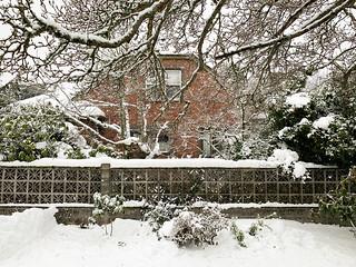 20190211 snowzilla-37 | by schnell foto