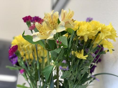 flowers at work | by walelia
