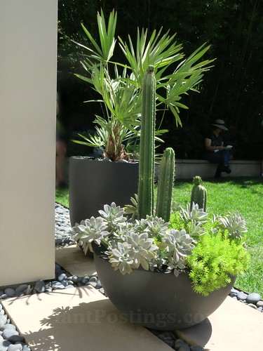 A Container 9   by PlantPostings