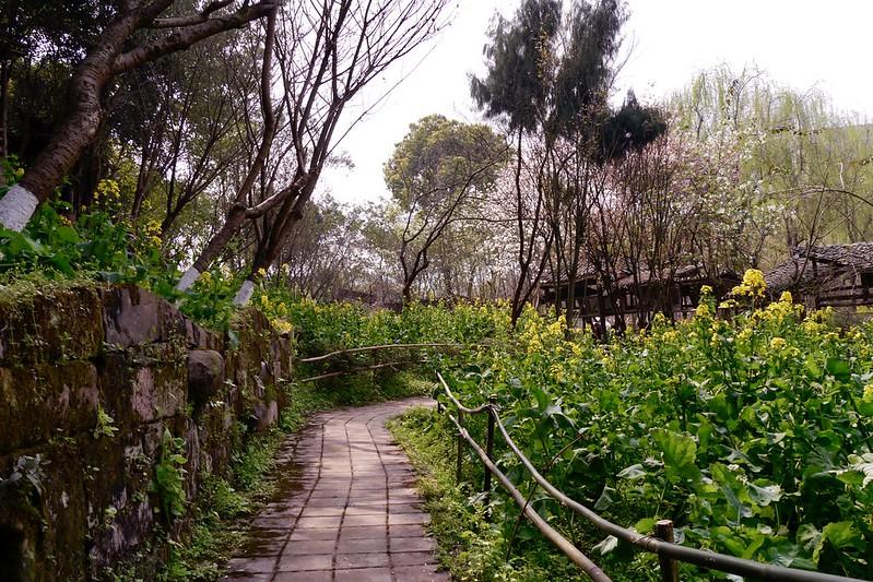四川美術學院  重慶