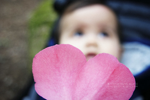 spring baby bokeh 💗 | by mohini :: mangopowergirl.com