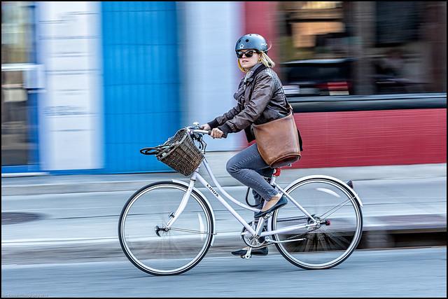 Linus Pilot - Have Basket - Will Travel
