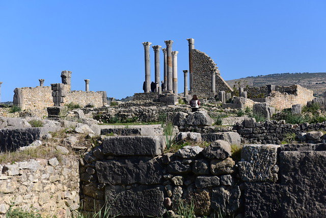 Volubilis, Morocco, January 2019 D810 216