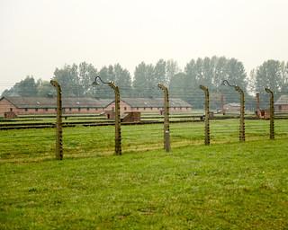 13. Barracones y verjas metálicas de Auschwitz   by Diario de un Mentiroso