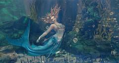 Mermaid Dance