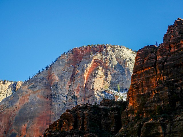 _1010196_1  Zion NP