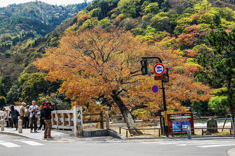 嵐山渡月橋 2