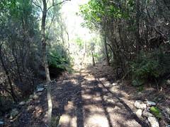 Chemin de Paliri historique en RG du Peralzone