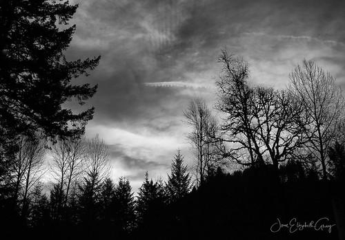 smoky smokyskies sunrise northsantiamcanyon