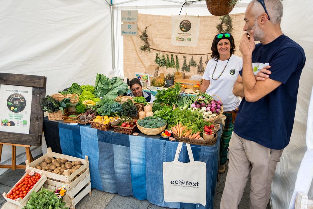 Ecofest, el Festival de la Sostenibilidad