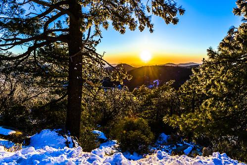mountlaguna snow trees pines sandiego sunset ice pinetrees california