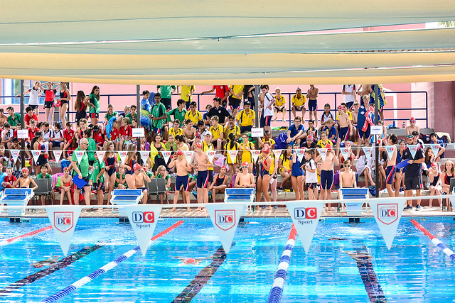 Junior House Swimming Gala 2019
