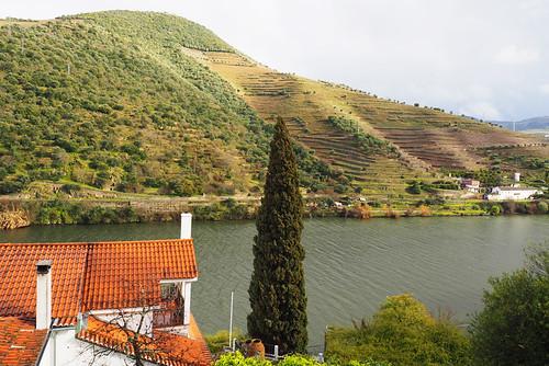 View from room, Quinta de la Rosa, Douro Valley, Portugal | by BuzzTrips