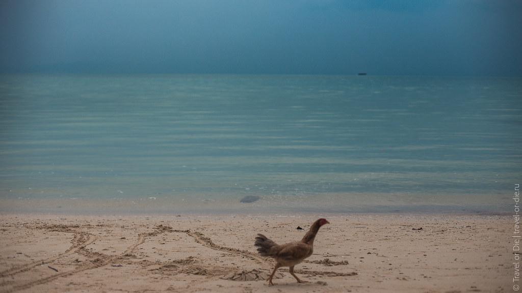 Rang-Yai-Island-Phuket-7230