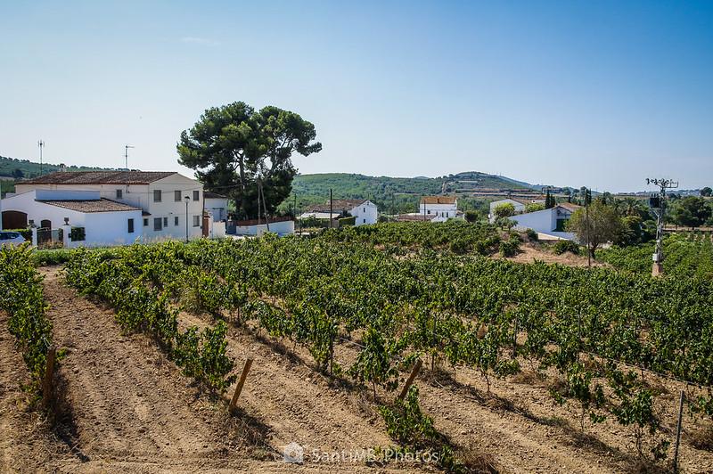 Vista de Viladellops desde la salida norte del pueblo