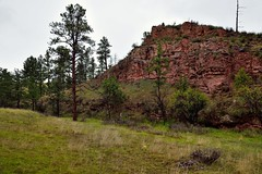 Hillsides, Meadows and Trees to Take in Along the Wind Cave Canyon Trail (Wind Cave National Park)