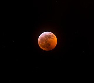 Lunar Eclipse | by BartCam