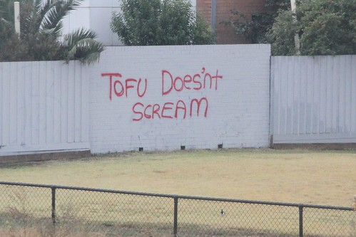 'Tofu Doesn't Scream' graffiti on the back fences near Sunshine station