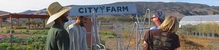 25171806418_da68371d91_o 3 | by SLO City Farmer