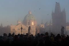 Foggy winter day
