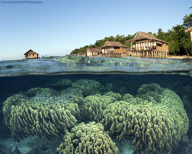 Over and under, Papua Paradise Eco Resort, Birie Island, Raja Ampat, Indonesia