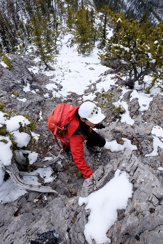 Scrambles - Anklebiter Ridge - Apr. 2019-8