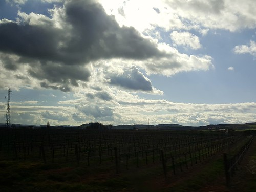 Clouds hugging vineyards. Haro, La Rioja (Spain) | by noemimartínezpérez