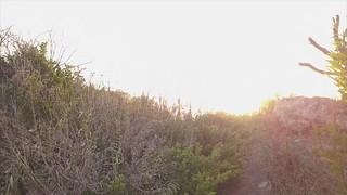 Up to Sunrise
