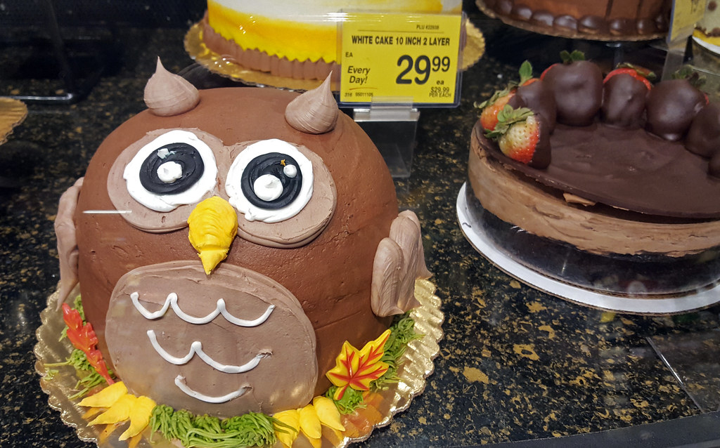Phenomenal Owl Cake At Vons Point Loma Ca Somephotostakenbyme Flickr Funny Birthday Cards Online Fluifree Goldxyz