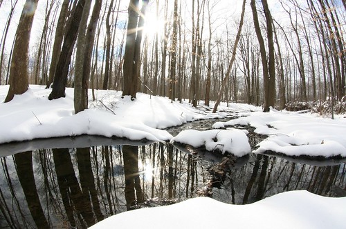 spring winter snow puddle ohio oh sun reflection