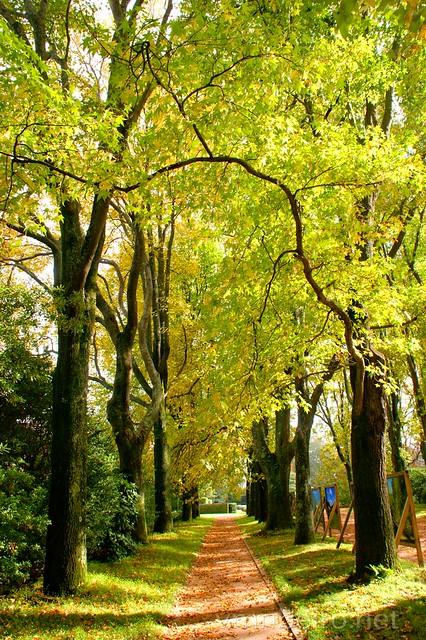 Jardim de Serralves