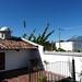 Antigua Guatemala – terasa Casa Elena, vlevo Agua, vpravo Fuego a Acatenango, foto: Petr Nejedlý