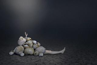Awake   by Anna Sterling Art