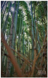嵐山半日遊-30