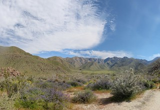 231 Looking southeast up Indian Canyon from the trail | by _JFR_