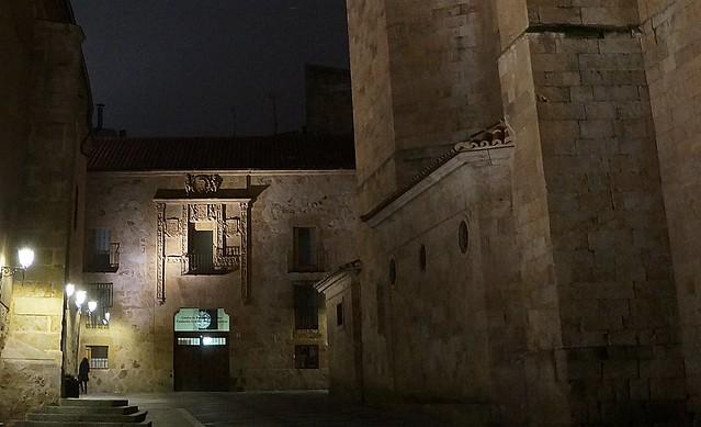 Paseando Salamanca de noche (II)