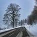 Wintertrip durch den Schwarzwald