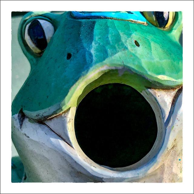 Froggie Birdhouse