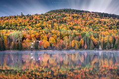 Dawn of Autumn