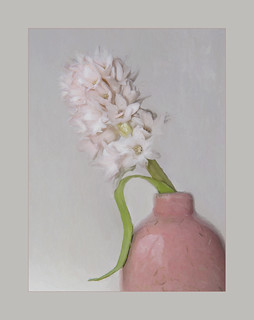 Hyacinth in vase | by Chris Tidman Photography