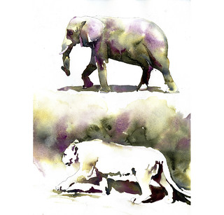 a09047c4784d6 Watercolor painting of elephant and mountain lion. Fine ar… | Flickr