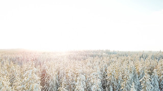 DJI_0019_Moment   by ina.margret
