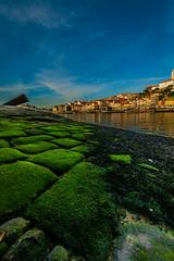 Porto (441)